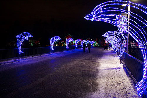 Calgary Zoo Lights Dolphin Bridge
