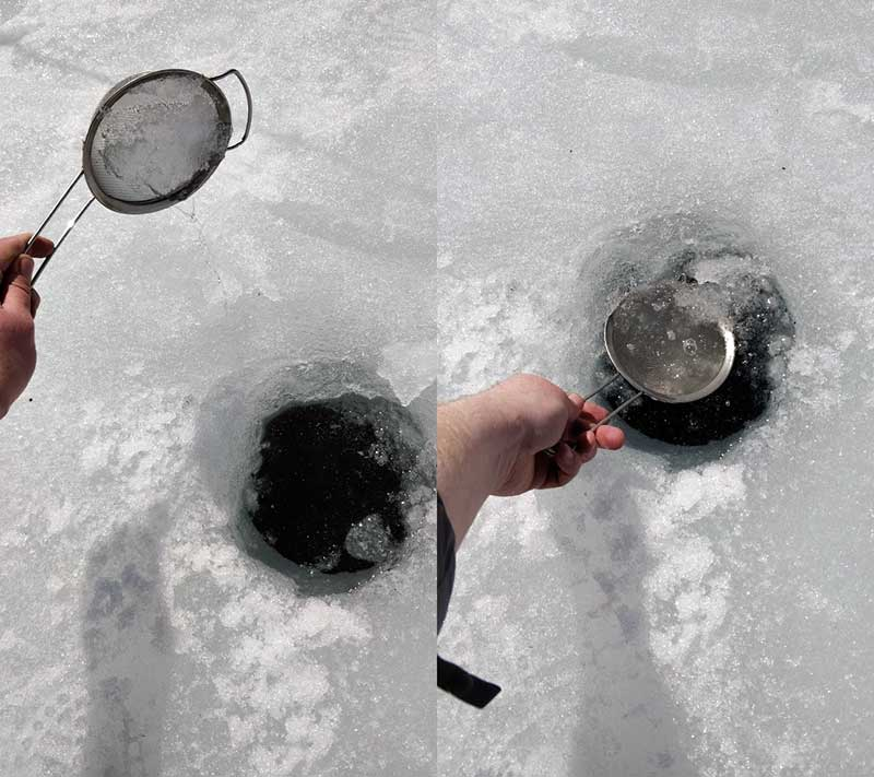 Ice Fishing Sieve Dollarama