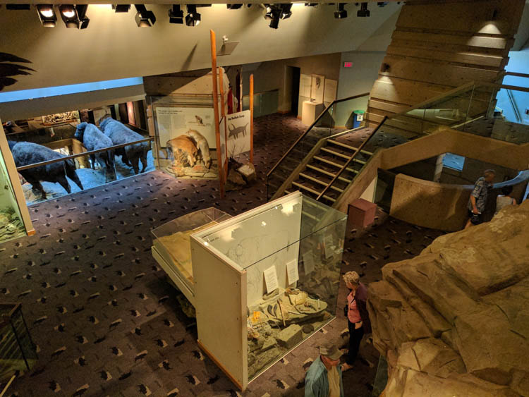 Head-Smashed-In Buffalo Jump Exhibits