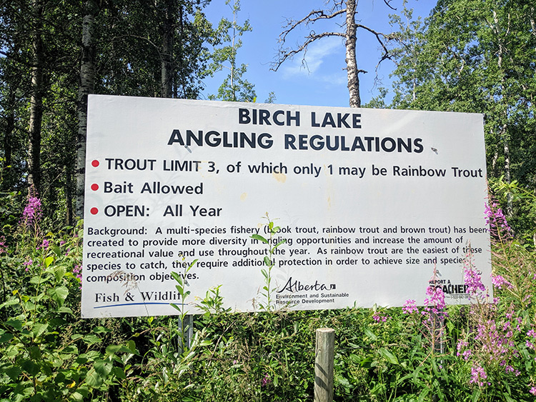 Camping Birch Lake Fishing Regulations