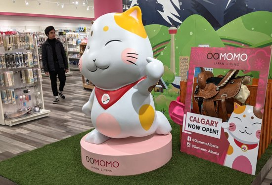 Oomomo Calgary – A Discount Japanese Variety Store