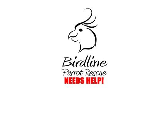 Birdline Canada – A Calgary Based Parrot Rescue