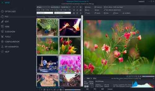Ashampoo Photo Commander Crack Latest Version Free Download 2020