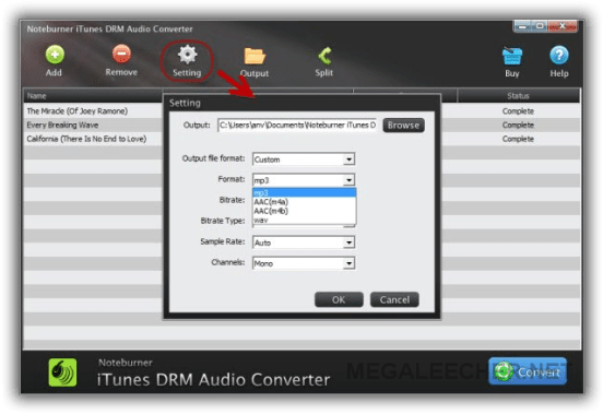 NoteBurner iTunes DRM Audio Screenshot 1