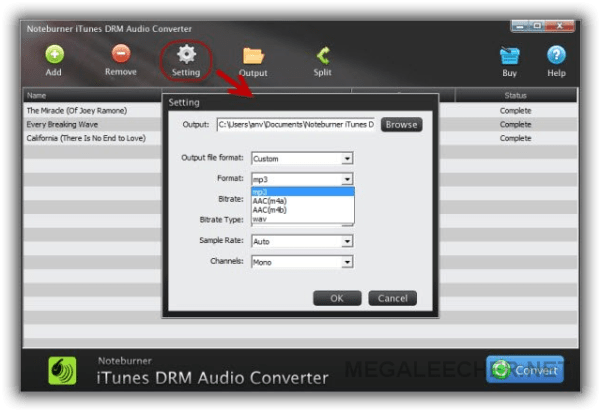 NoteBurner iTunes DRM Audio Screenshot 1