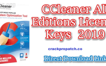 CCleaner Professional Key 5.80.8743 With Crack Latest Download (2022)
