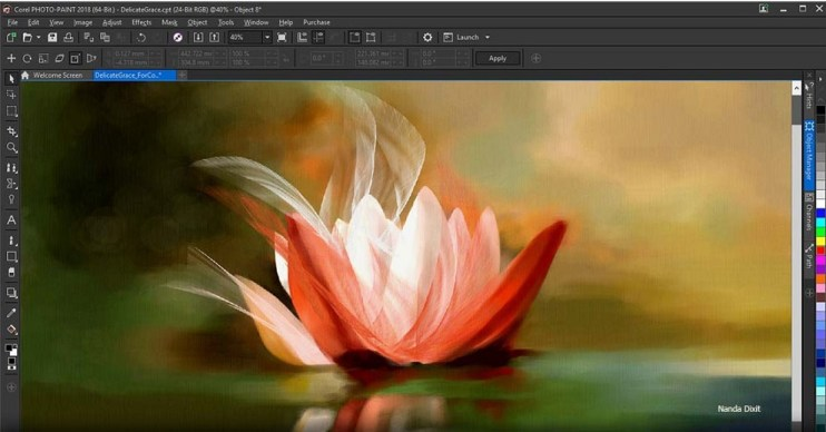 CorelDRAW Graphics Suite 2020 Free Download for windows