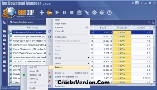 Ant Download Manager Registration Key