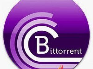 BitTorrent Pro Activation Key