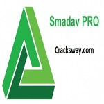 Smadav 2021 Rev 14.6 Pro Crack Incl Serial Key Full Version