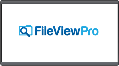 FileViewPro 2019 Crack + Keygen Free Download {Latest}