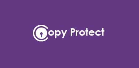 Newsoftwares Copy Protect 2.0.3 Crack & Keygen Download