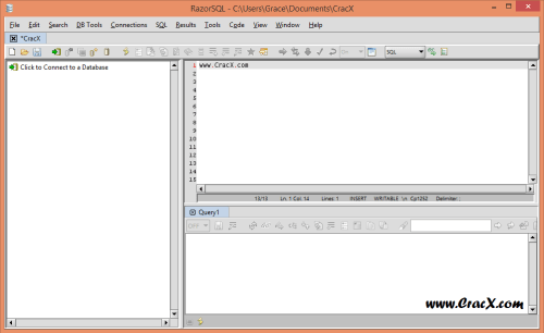 RazorSQL 7.3.3 License Key & Patch Latest Free Download