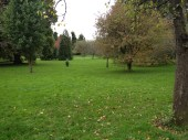 Public Gardens. Gorgeous.