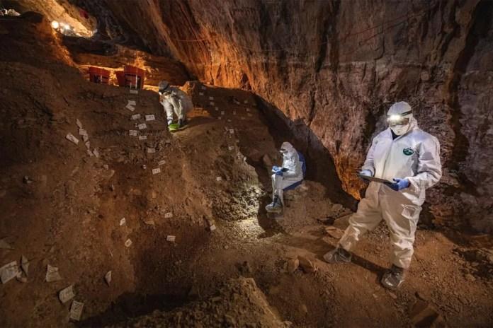 Surprise cave discoverie