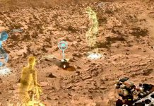 Life Detected on Mars could be Accidentally Created by NASA, says Geneticist