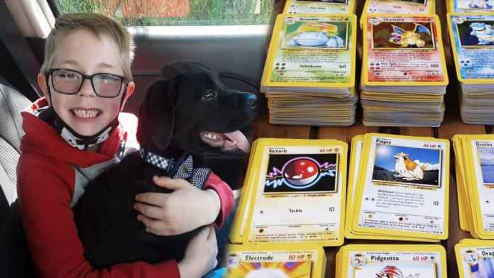 Pokemon Cards proves a lifesaver, as a Kid sold them to Pay For Puppy's Treatment