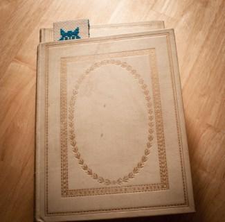 Cross-stitched Owl bookmark.
