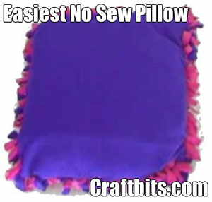 Easy No Sew Pillow