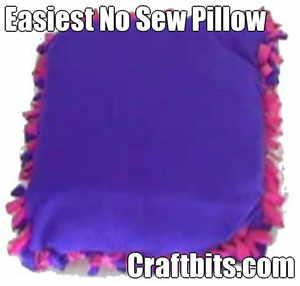 Easy No Sew Pillow