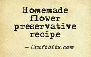 homemade flower preservative recipe