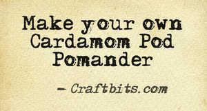 Cardamom Pod Pomander