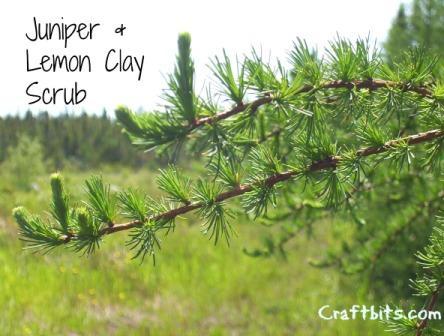 Juniper & Lemon Clay Scrub