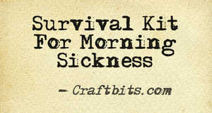 morning sickness survival kit