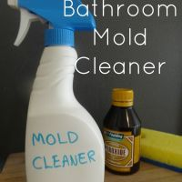 Bathroom Mold Cleaner