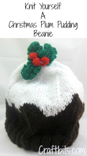Adult Beanie – Christmas Plum Pudding