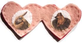 Valentine Photo Hearts
