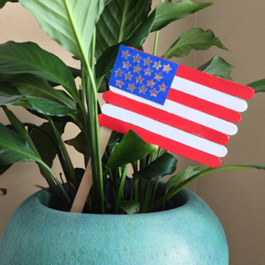 Create a flag out of posicle sticks.