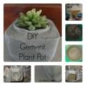 Cement Plant Pot