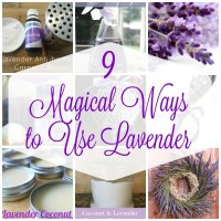 9 Magical Ways to Use Lavender