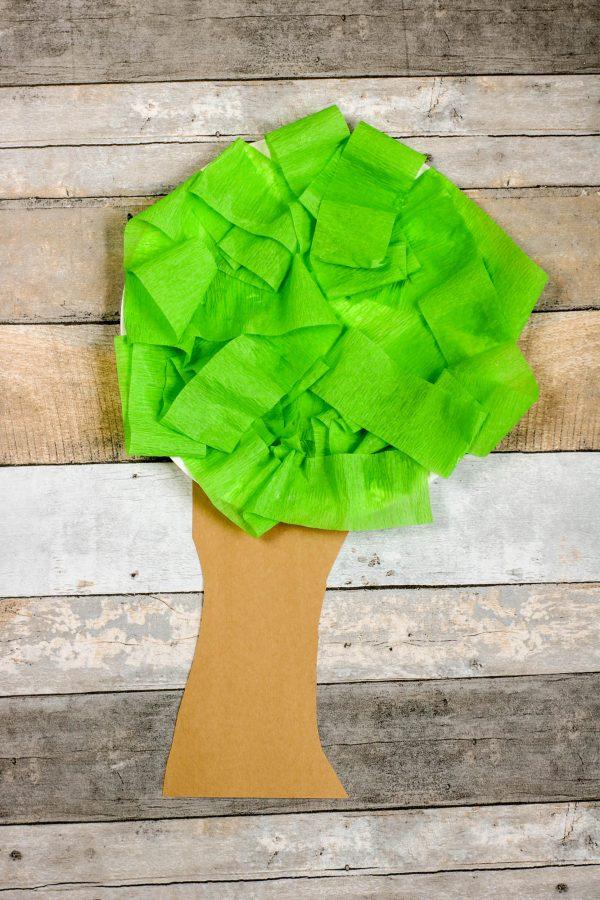 Tree Paper Plate Craft