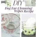 DIY Dog Cleaning Ear Wipes