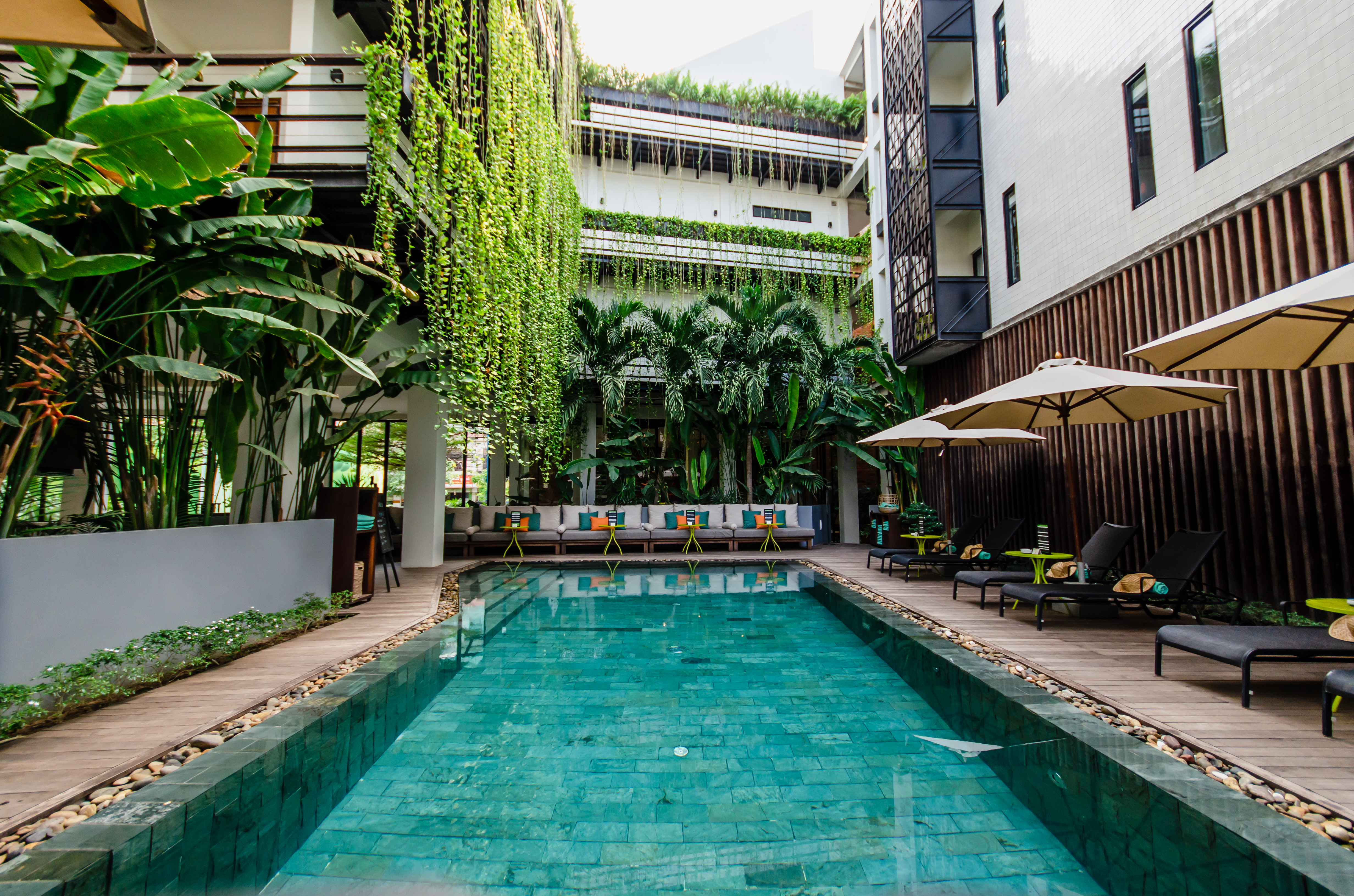 Travel public relations client The Aviary Hotel's Ground Level Pool - with vertical greenery, deck chairs and umbrellas