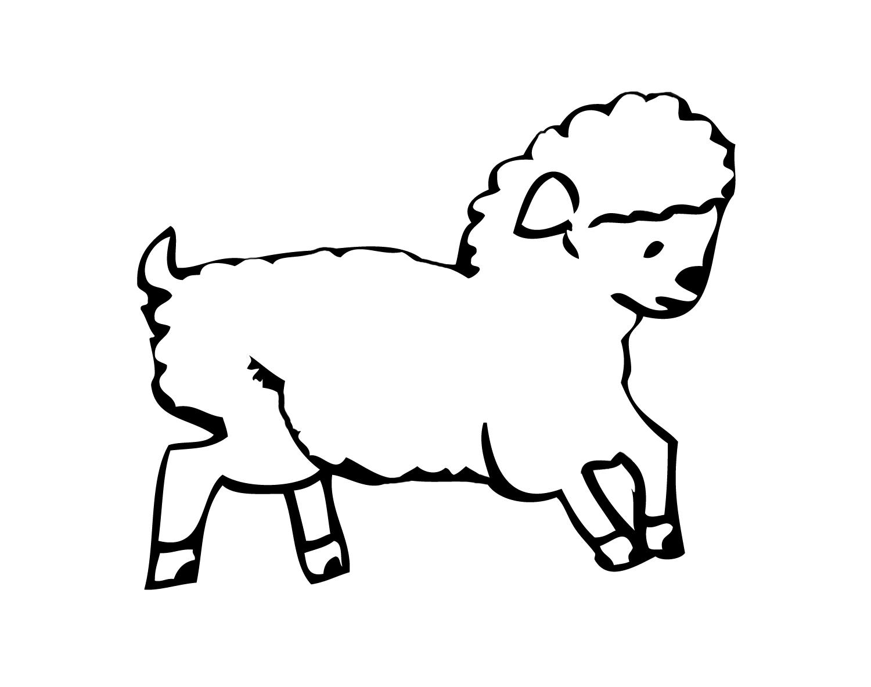 Sheep Cotton Ball Art