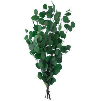 Eucalyptus Bundle and Garland