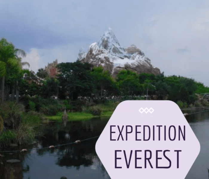 Attraction Review: Expedition Everest