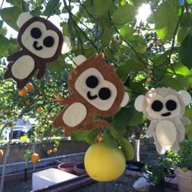 new year monkeys.