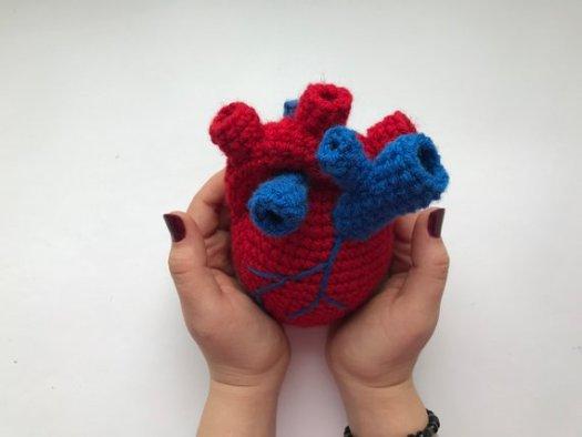 Crochet Pattern Anatomical Heart Surgery Trophy Digital PDF   Etsy   394x525