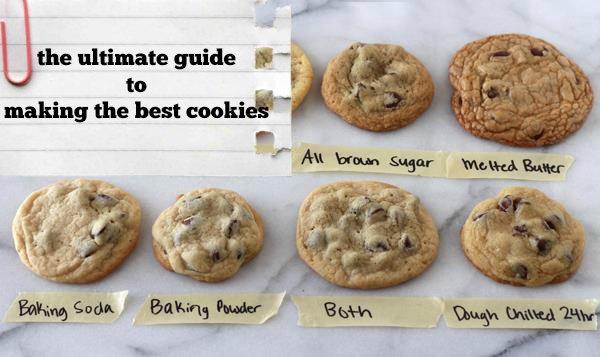 cookie-science