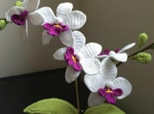 Advanced crochet pattern for this gorgeous orchid flower. Free pattern.
