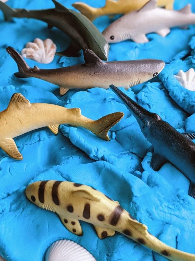 shark week activity for kids