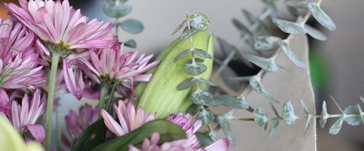 b_flores-lindas-decorativas