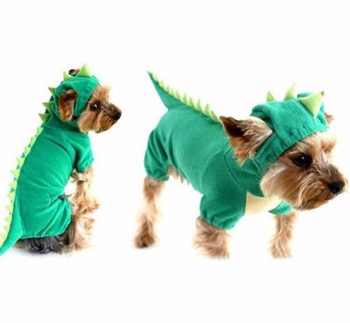 dinosaurio-dog-costume