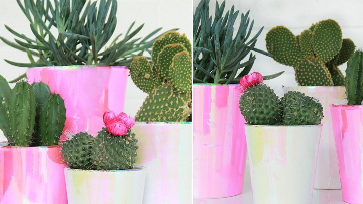 macetas-decoradas-holograficas