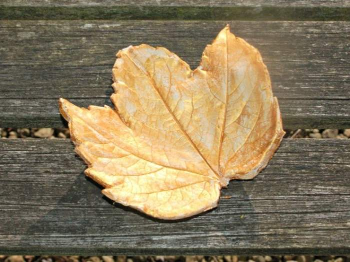 Here are 3 great craft projects to make with leaves collected on a wild walk or from your garden.