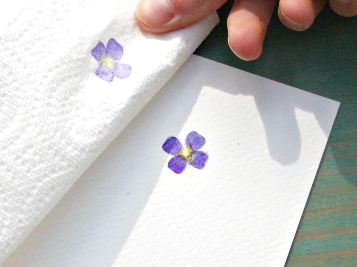 craft invaders day 17 30dayswild make hammered flower prints